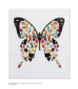 James Verbicky / Papillon En Fleur 2 ( Butterfly in Bloom)